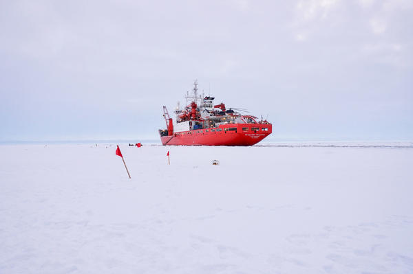 Scientists on the research vessel Akademik Fedorov spent a week or so setting up a network of scientific monitoring equipment up to about 25 miles from the MOSAiC ship.