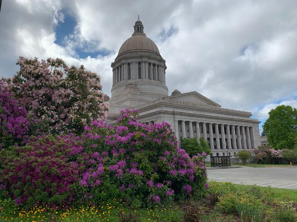Washington lawmakers are not ruling out a possible special session in June to begin to address the growing budget crisis caused by the COVID-19 pandemic.
