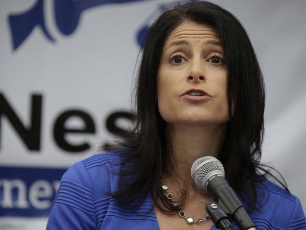 Dana Nessel announcing her bid for Michigan attorney general in 2017.