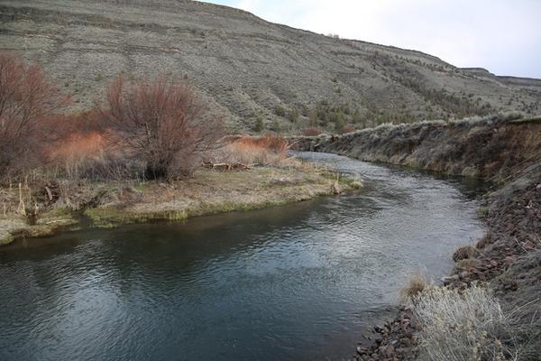 <p>A side channel of the Deschutes River called the ox bow feeds an intake pipe for the Warm Springs water treatment plant.&nbsp;</p>