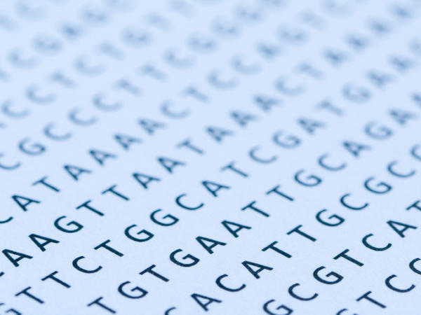 When researchers looked at the genetic sequences of 179 individuals, they found far more defects in the patterns of As, Ts, Gs, and Cs than they expected.