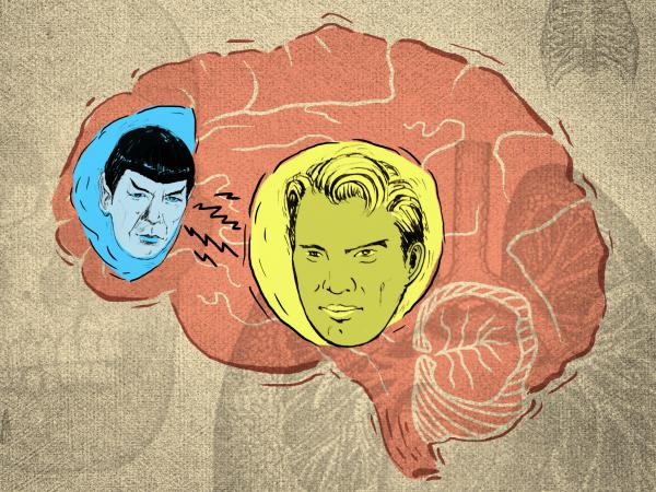 Imagine the adolescent brain as the bridge from <em>Star Trek</em>'s USS Enterprise, host to a constant tug of war between the impulsive Captain Kirk (limbic system) and the reasonable Mr. Spock (prefrontal cortex).