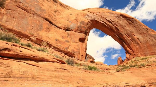 Broken Bow Arch rises from Willow Canyon in the Escalante Canyons region of Utah's Grand Staircase-Escalante National Monument.