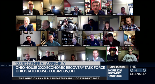 Online meeting of the task force