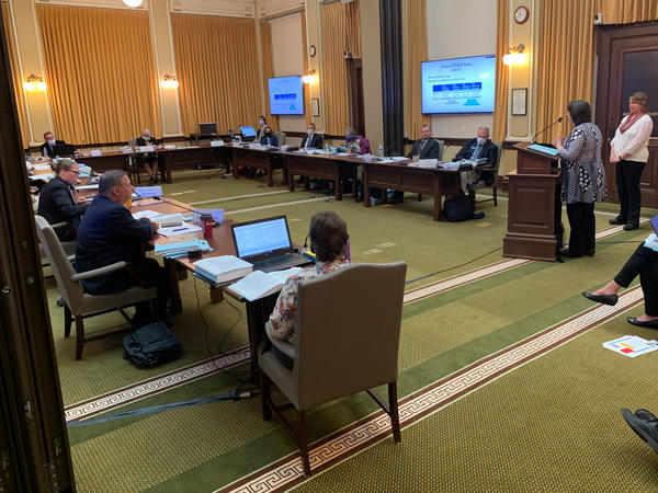 The Legislative Audit Committee receives an audit presentation regarding Medicaid eligibility under the Montana Department of Public Health of Human Services on June 16, 2020.