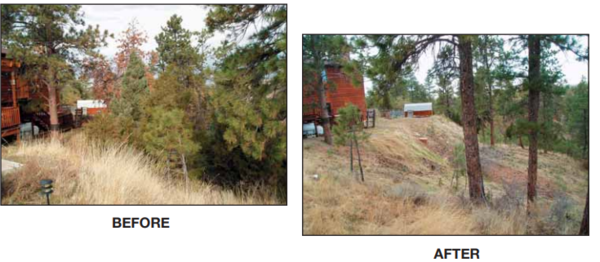A photo of a home before and after wildfire preparation.