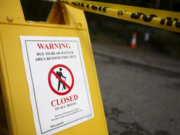 The Elephant Back Loop Trail and immediate area is closed because of the bear attack.