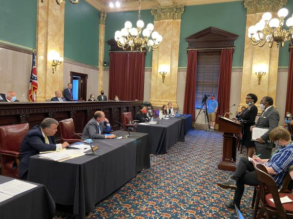 The sponsors of the Senate resolution, Sen. Sandra Williams (D-Cleveland) and Sen. Hearcel Craig (D-Columbus) offer proponent testimony. The lone Republican who signed on, Sen. Kirk Schuring (R-Canton, bottom left) is among those looking on.