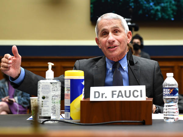 Dr. Anthony Fauci, director of the National Institute of Allergy and Infectious Diseases, testifies Tuesday during a House Energy and Commerce Committee hearing on the Trump administration's response to the COVID-19 pandemic.