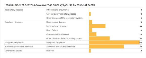 Certain non-COVID causes of deaths showed unusual increases during the first four months of the pandemic in Idaho.