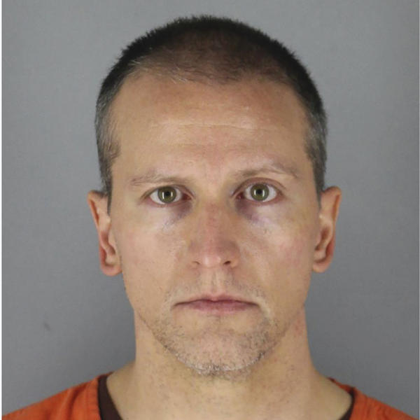 Former Minneapolis police Officer Derek Chauvin was arrested on May 29 in connection with the death of George Floyd.