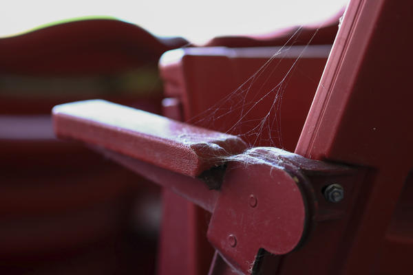 Spider webs grow on seats at Great American Ball Park in July.