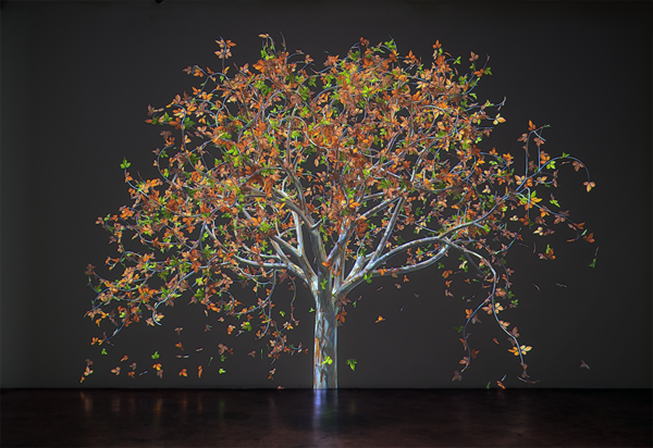 In Jennifer Steinkamp's digital animations, trees gradually change color, lose leaves, sprout new leaves, grow flowers, and drop petals to the ground. She's done a series of such trees in honor of teachers who've had a profound influence on her.