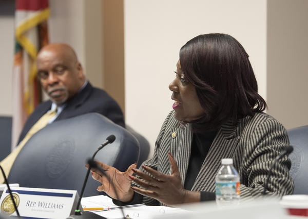 Rep. Patricia Williams speaks during a meeting of the House education committee in January 2019.