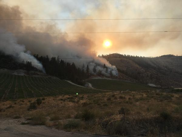 Smoke from the Cold Springs Fire in Washington. (Ashley Ahearn)