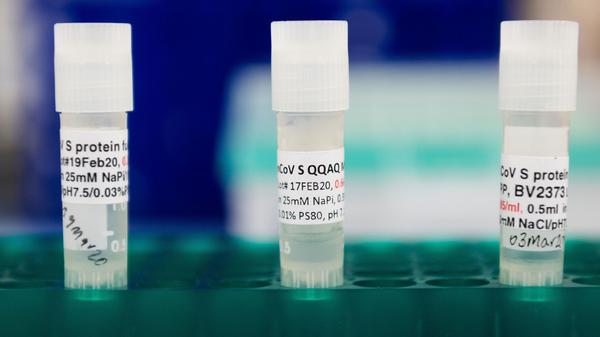Three potential coronavirus vaccines are kept in a tray at Novavax labs in Gaithersburg, Md., in March 2020. The company has moved into phase 3 trials in the U.K.