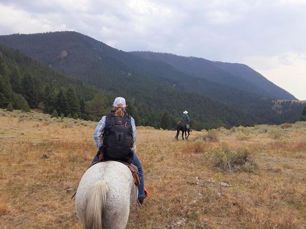 Denise Wade with Big Sky Adventures follows Rob Rasch with Adventures Outfitting through the Custer Gallatin National Forest section of Cowboy Heaven near Ennis on September 24, 2020.