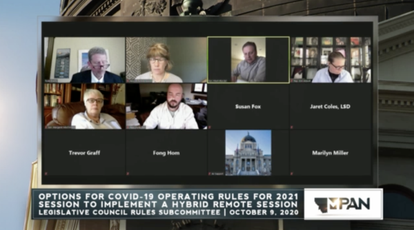 Members of Montana's Legislative Council Rules Subcommittee hold a virtual meeting Oct. 9, 2020.