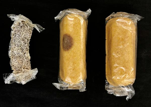 For eight years, a box of Twinkies sat in Colin Purrington's basement until last week when he finally opened them. Varying levels of mold had developed on the snack cakes, and he eventually sent them to two West Virginia University scientists to study the kind of fungus growing on them.
