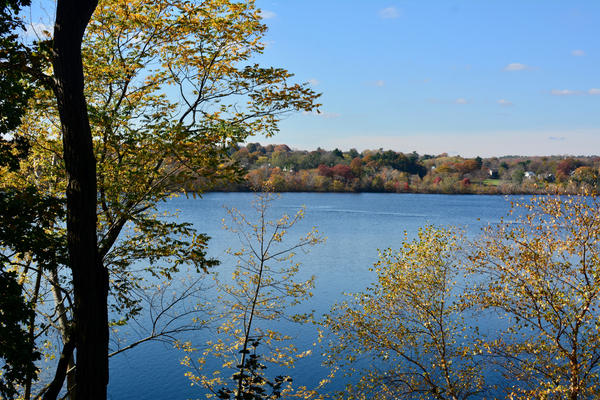 Fresh Pond Reservoir in Cambridge, Massachusetts. (Photo via Shutterstock)