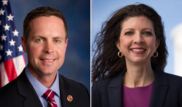 It will be a rematch between U.S. Rep. Rodney Davis, a Republican from Taylorville, and Democratic challenger Betsy Dirksen Londrigan of Springfield.
