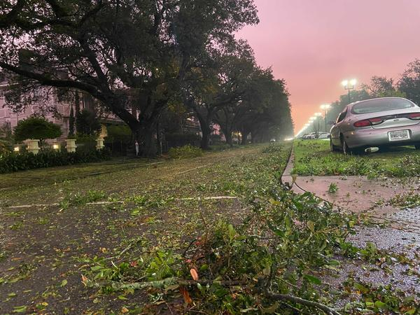 Aftermath of Hurricane Zeta On Napoleon Ave.