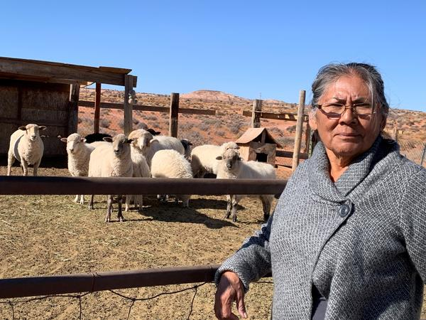 Darlene Yazzie typically hauls water from a windmill 5 miles from her house for her sheep. Officials tell her it's unsafe for humans but OK for livestock.