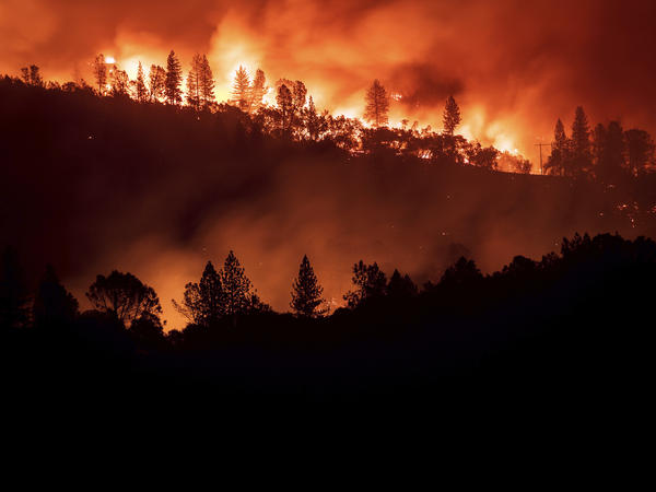 The 2018 Camp Fire killed 85 people in all and destroyed nearly 19,000 buildings.