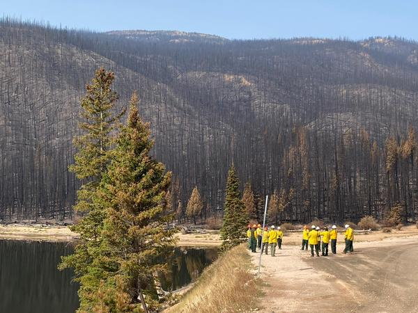 Members of an assessment team put together by the U.S. Forest Service are beginning to gather initial information about the Cameron Peak Fire's intensity, which will affect water quality for years.