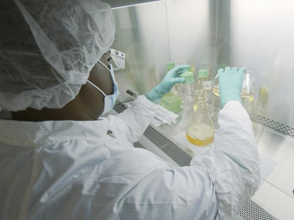 In this photo provided by Eli Lilly, a researcher tests possible COVID-19 antibodies in a laboratory in Indianapolis, Ind. On Monday, U.S. government officials announced they are putting an early end to a study testing an Eli Lilly antibody drug for people hospitalized with COVID-19 because it is unlikely to help.
