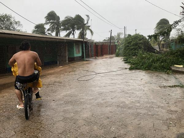 A man rides a bike trough a street with trees fallen by heavy winds of Hurricane Eta on Tuesday in Puerto Cabezas, Nicaragua.