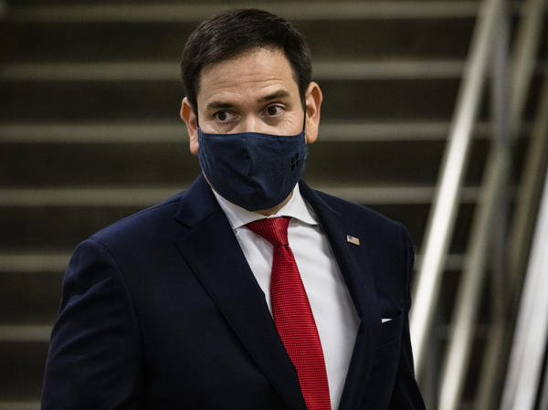 """Sen. Marco Rubio, R-Fla., told reporters that the selection of the next director of national intelligence would be up to the """"president-elect."""""""