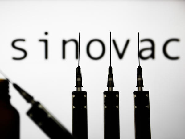 Sinovac has released data about early clinical trials of its vaccine against the coronavirus.