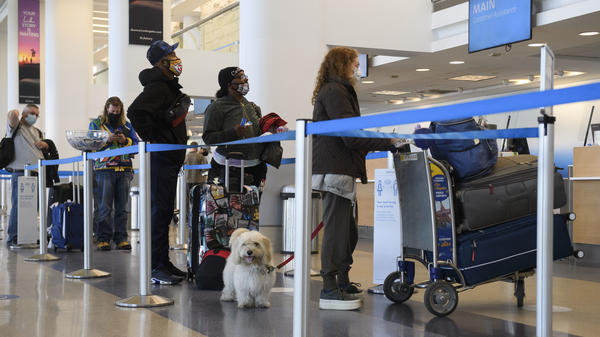 Travelers wait to check baggage for an American Airlines flight at Los Angeles International Airport on Wednesday. The Centers for Disease Control and Prevention is urging people to not travel for Thanksgiving.