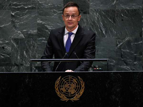 Hungarian Foreign Minister Peter Szijjarto speaks during the 74th session of the United Nations General Assembly on Sept. 26 in New York.