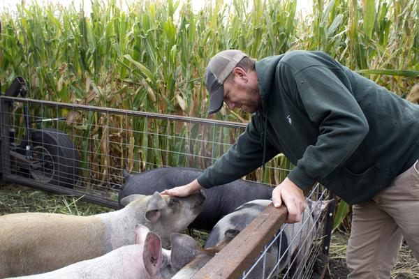 """Farmer Zack Smith, who calls himself """"The Stock Cropper,"""" pets one of the pigs in his mobile pen."""