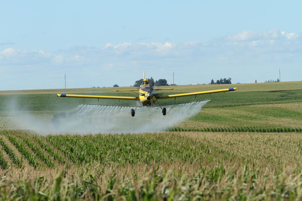 Pesticide exposure is an issue in agricultural areas where pesticide use is ubiquitous.
