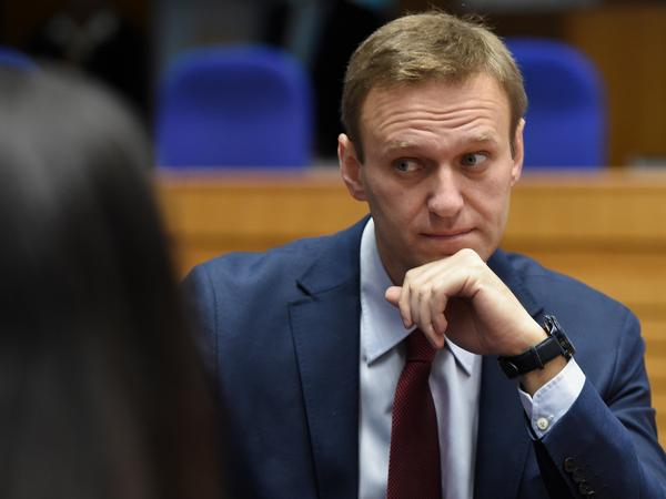 Russian opposition leader Alexei Navalny was detained on Sunday upon his arrival in Moscow. He had spent nearly the last five months recovering in Germany after being poisoned in August.
