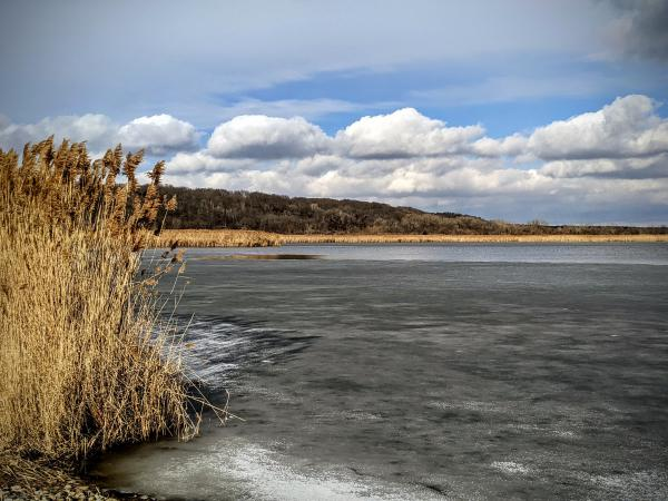 A recent snowy day at the Chautauqua National Wildlife Refuge in rural Mason County.