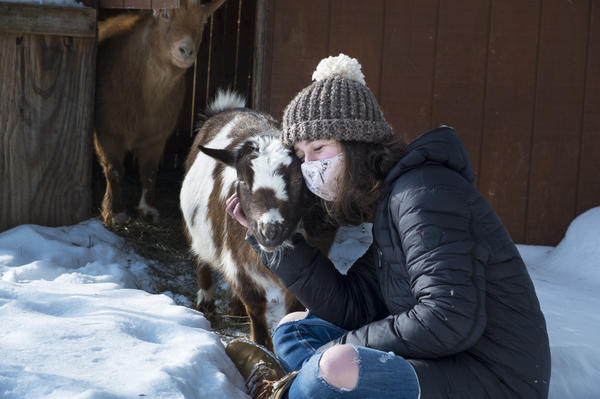 A reader asks: I want to have a private cuddle session with some goats but am concerned that the goats may have cuddled with other people. What's the COVID-19 risk? <em>Note: The goat and human in the photo above are part of the same pandemic pod.</em>