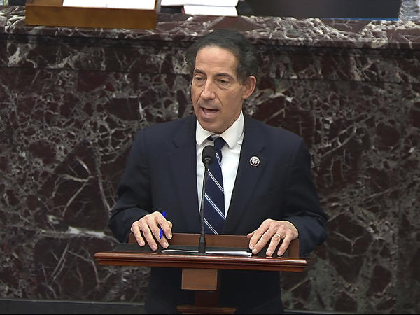 In this image from video, House impeachment manager Rep. Jamie Raskin, D-Md., speaks during the second impeachment trial of former President Donald Trump and says he would like to subpoena Rep. Jaime Herrera Beutler.