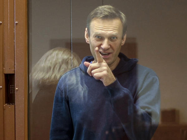 In a photo taken last week at Babushkinsky District Court, Russian opposition leader Alexei Navalny gestures during a hearing.