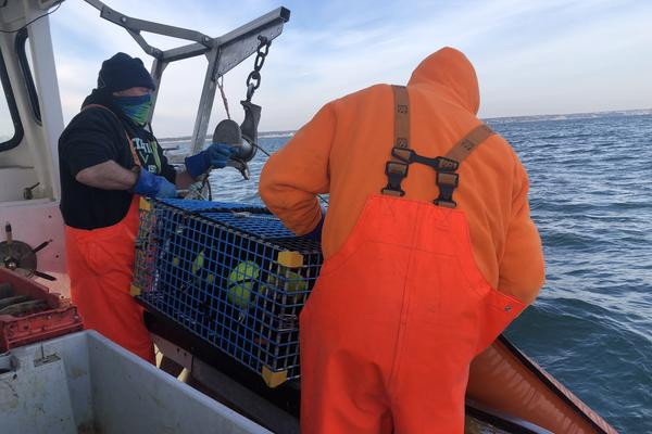 Rob Martin, who has been fishing off his boat for the last 29 years, and his partner haul up a 150-pound end trap while ropeless lobster fishing in Cape Cod Bay in Massachusetts.