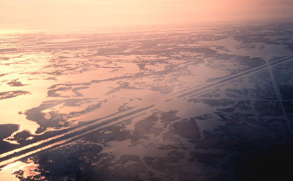 Canals carved by oil and gas companies through Louisiana marshes have led to saltwater intrusion and erosion.