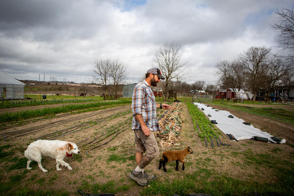 Shawn Fagan walks with his dog Jasper and Anna the sheep on his farm, Fagan Family Farms in Kyle, TX, on Mar. 10, 2021.  Many of the farm's crops were irreparably damaged during freezing temperatures brought on by Winter Storm Uri.