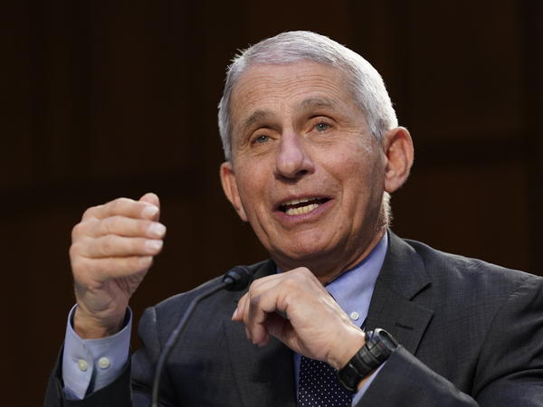Dr. Anthony Fauci, director of the National Institute of Allergy and Infectious Diseases, testifies during a Senate hearing last month on the federal coronavirus response.