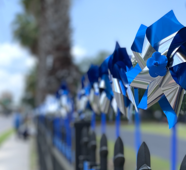 """""""The bluest of blue pinwheels"""" have been put up in honor of Child Abuse Prevention Month by the Children's Board of Hillsborough County"""