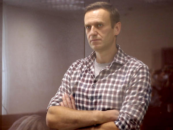Russian opposition activist Alexei Navalny during a court hearing in February.