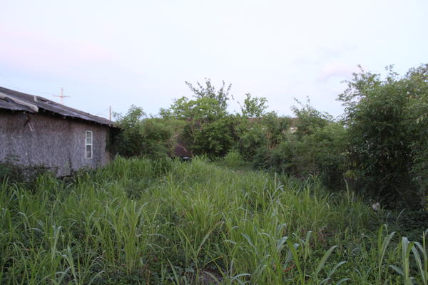 A vacant lot on Clouet Street in the Upper 9th Ward is available as part of the city's Mow to Own program. April 26, 2021.