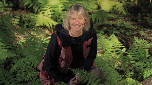 Suzanne Simard is a professor of forest ecology at the University of British Columbia. Her own medical journey inspired her research into, among other things, the way yew trees communicate chemically with neighboring trees for their mutual defense.